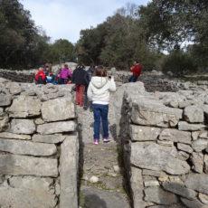 La préhistoire à travers le site de Cambous et la visite d'une grotte